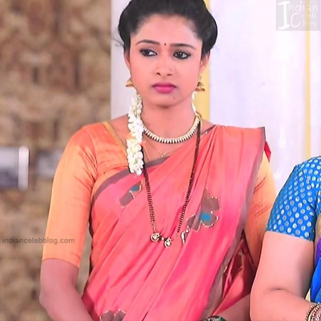 Kannada TV Actress Gallery 2_32_Hot saree pics