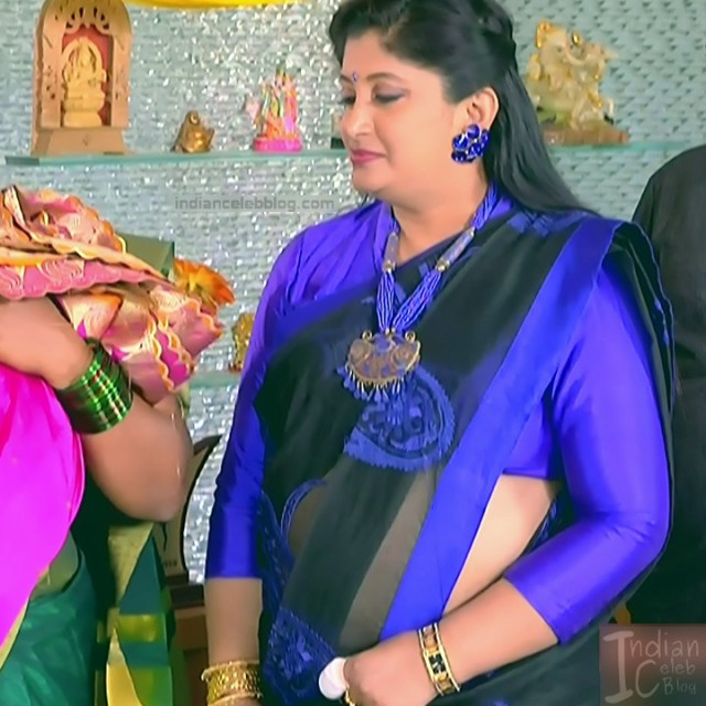 Kannada TV Actress_Comp 1 Mature_18_Hot Saree photos