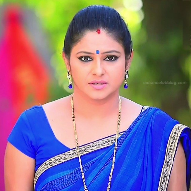 Kannada TV Actress_Comp 1 Mature_3_Hot Saree photos