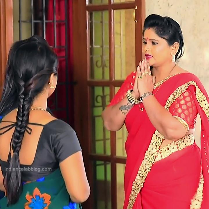 Kannada TV Actress_Comp 1 Mature_4_Hot Saree photos