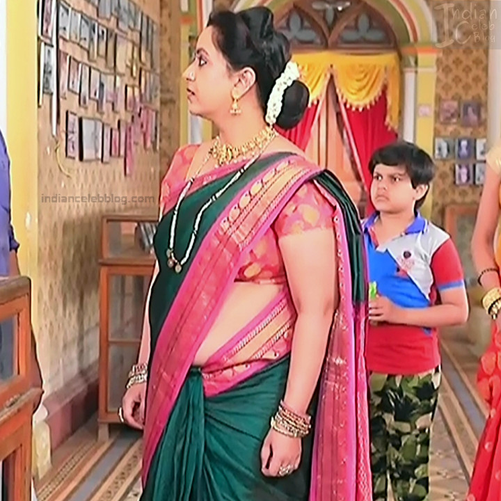 Kannada TV Actress_Comp 1 Mature_6_Hot Saree photos