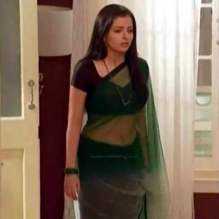 Shrenu Parikh_Hindi TV Actress - Hot Saree Pics S1_21