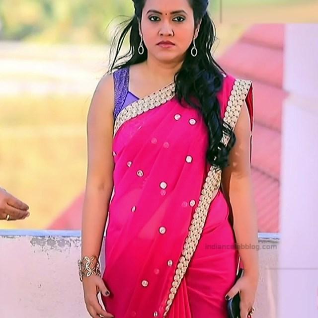 Sindhu Kalyan_Kannada TV Actress PuttaGM-S1_10_Hot Saree pics