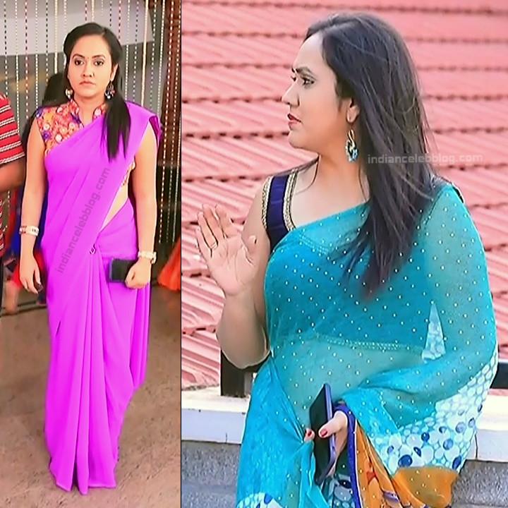 Sindhu Kalyan_Kannada TV Actress PuttaGM-S1_14_Hot Saree pics