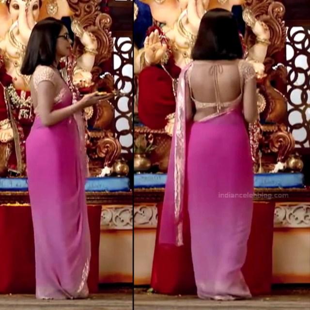Sonal Vengurlekar_Hindi TV Actress YehVR-S5_11_Hot Saree Images