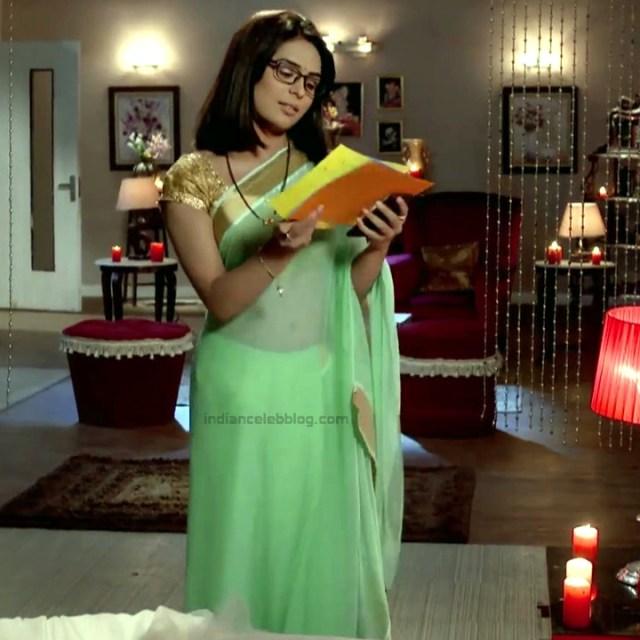 Sonal Vengurlekar_Hindi TV Actress YehVR-S5_14_Hot Saree Images