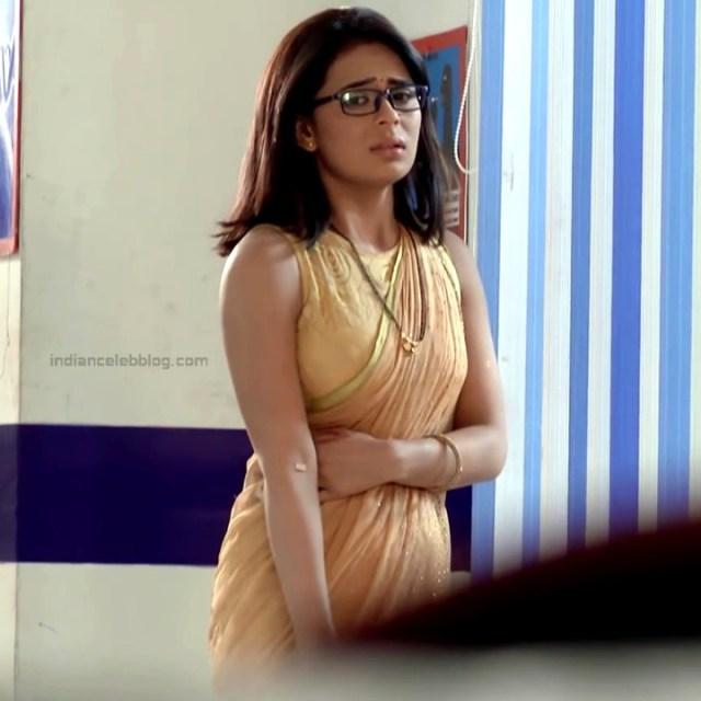 Sonal Vengurlekar_Hindi TV Actress YehVR-S5_9_Hot Saree Images