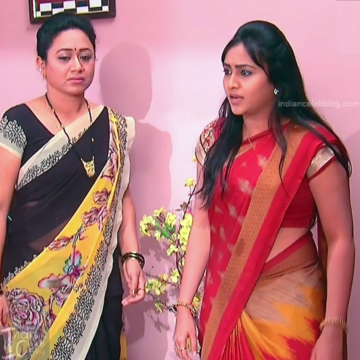 Telugu TV Actress Compilation S1_3_Hot Saree photos