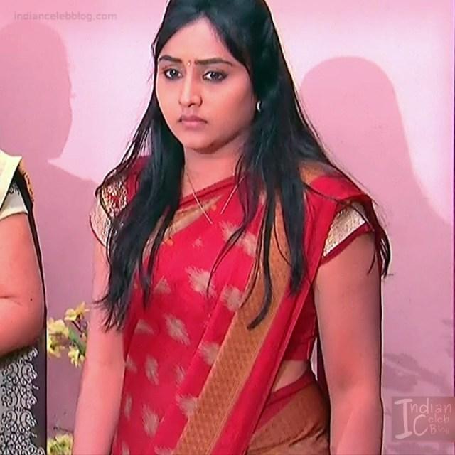 Telugu TV Actress Compilation S1_4_Hot Saree photos