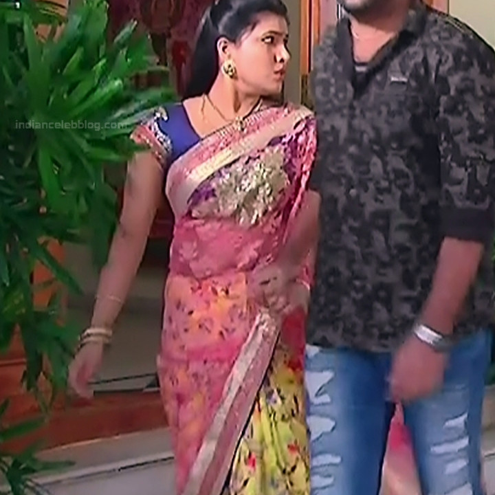 Telugu TV Actress Compilation S1_9_Hot Saree photos