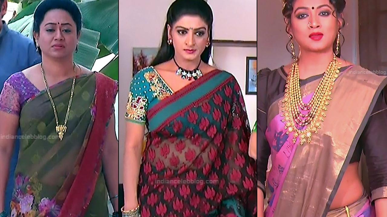 Telugu serial celebs hd caps in sari - compilation gallery