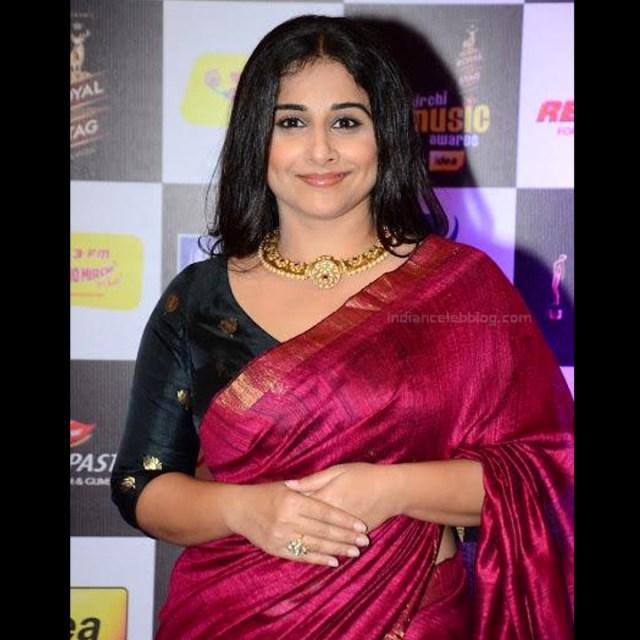 Vidya Balan_Bollywood Actress Event Pics - S1_14_Hot Saree