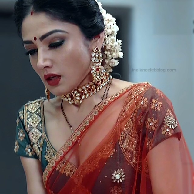 Donal Bisht Hindi Serial Actress EkDTS1 14 Hot Saree Pics