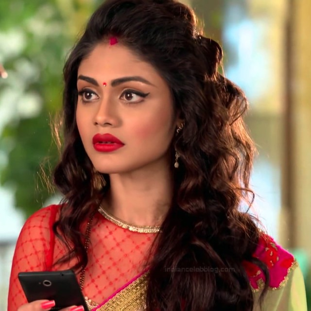 Sreejita De Hindi TV Actress Tumhi HBST-S1 9 Hot saree pics