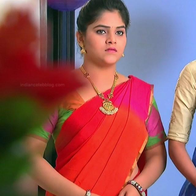 Telugu TV Actress_MCmplS2_2_Hot saree photo