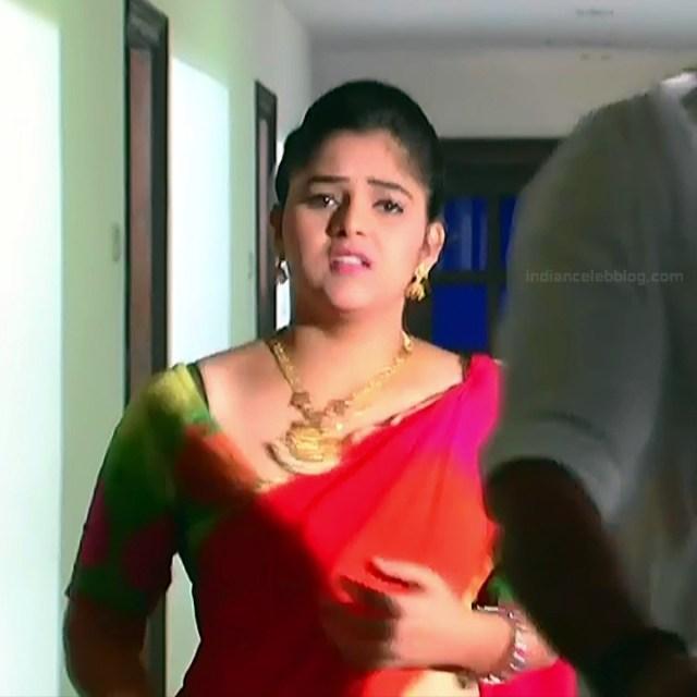 Telugu TV Actress_MCmplS2_8_Hot saree photo