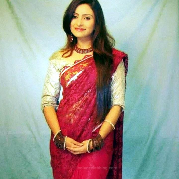 Aleeza Khan 029 Hindi TV Actress hot saree pic