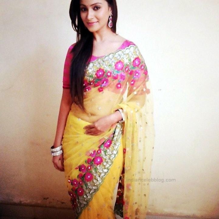 Aleeza Khan 034 Hindi TV Actress hot saree pic