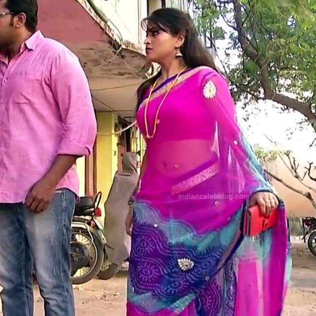 Nagashree Tamil TV Actress Chandralekha S1 15 hot saree photo
