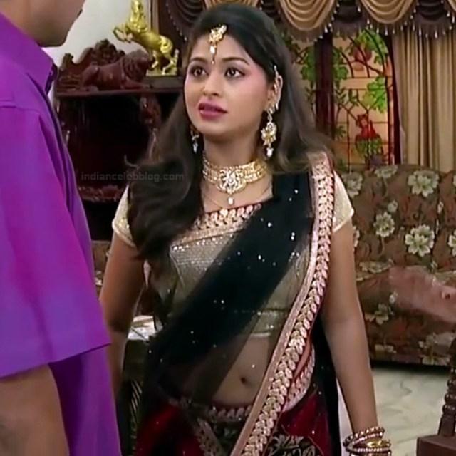 Nagashree Tamil TV Actress Chandralekha S1 2 hot saree photo