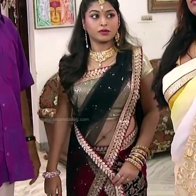 Nagashree Tamil TV Actress Chandralekha S1 3 hot saree photo