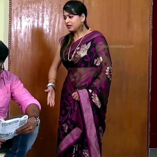 Nagashree Tamil TV Actress Chandralekha S1 7 hot saree photo