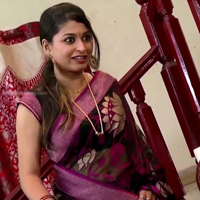 Nagashree Tamil TV Actress Chandralekha S1 8 hot saree photo