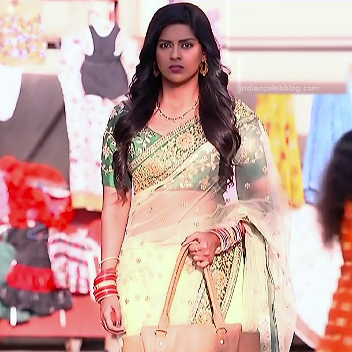 Swarda Thigale Hindi serial actress Savitri DCHS3 12 hot sari pics