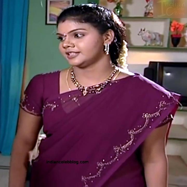 Telugu TV Actress Maa Nanna Art1-S1 12 Hot Saree Caps
