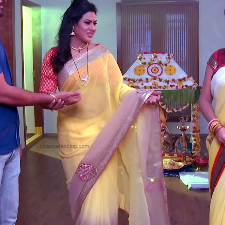 Telugu TV serial mature actress Comp2 13 hot saree photo