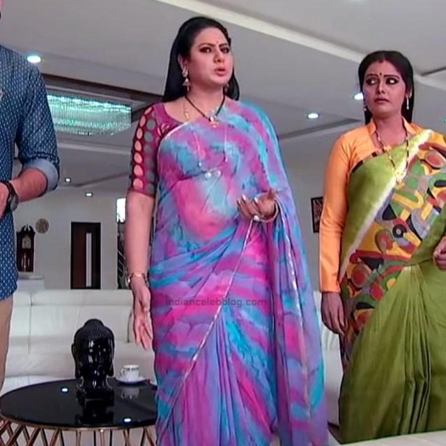 Telugu TV serial mature actress Comp2 22 hot saree photo
