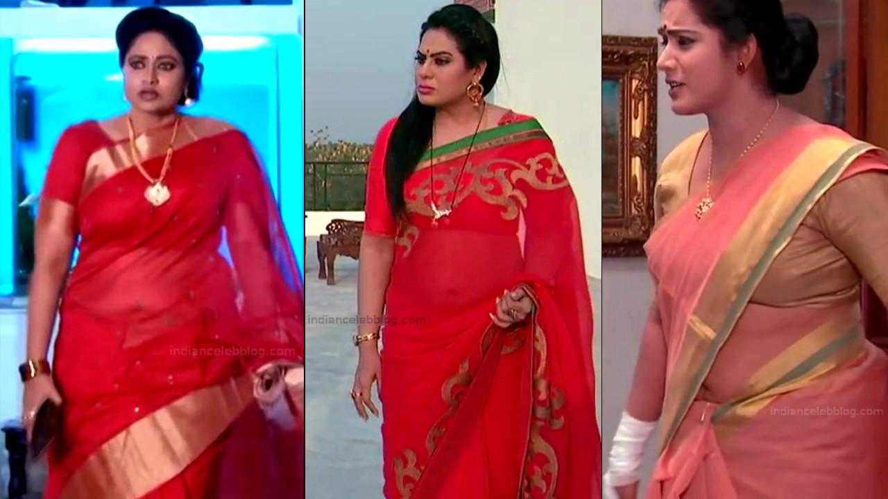 Telugu TV serial mature actress Comp2 25 Thumb