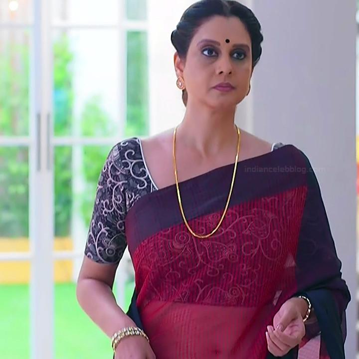 Hindi TV actress mature CompS3 14 sari photo