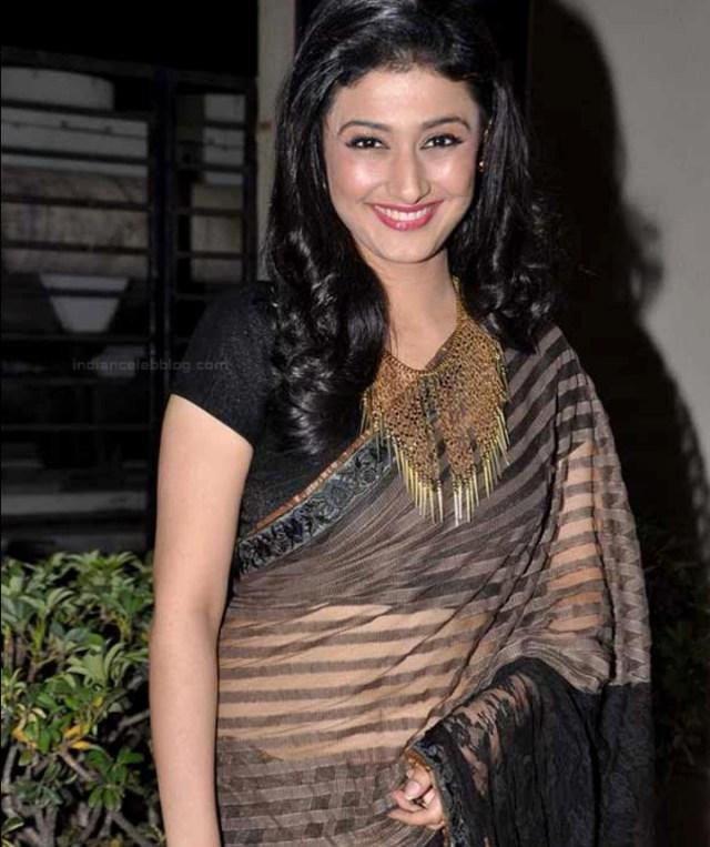 Ragini Khanna Hindi TV Actress CelebTS1 24 hot Saree photos
