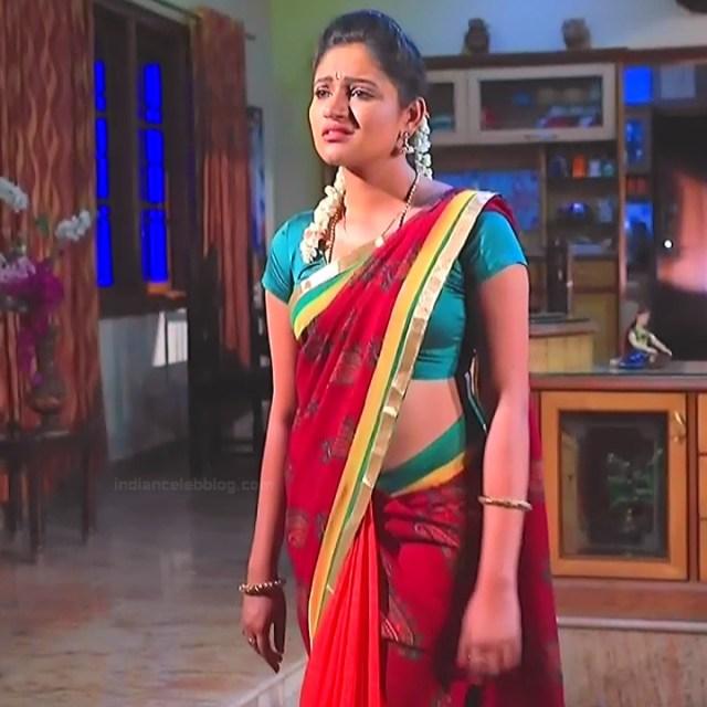 Ranjani Raghavan Kannada TV actress PuttGMS2 6 hot saree caps