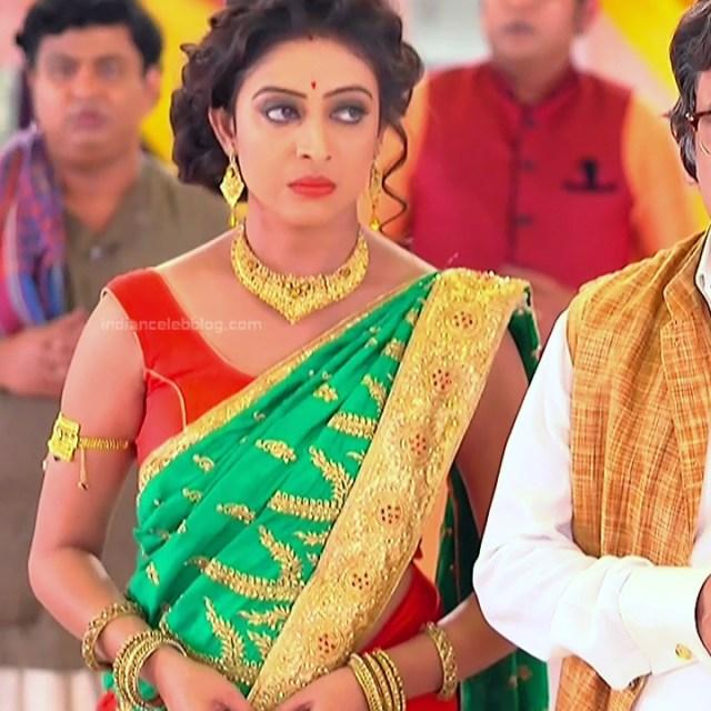Bengali TV serial actress CompGS1 10 hot saree photo
