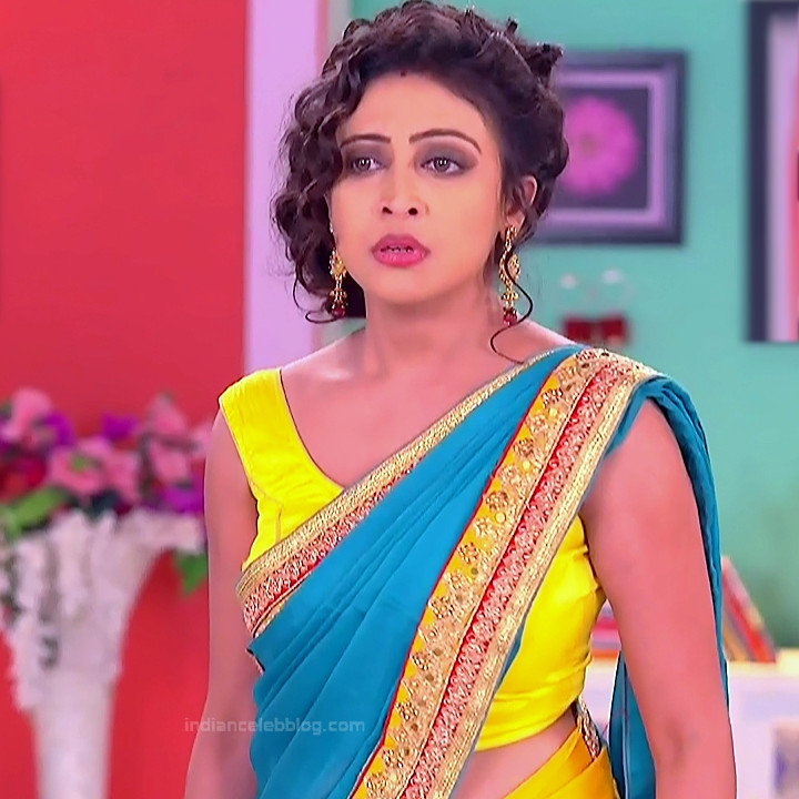 Bengali TV serial actress CompGS1 5 hot saree pics