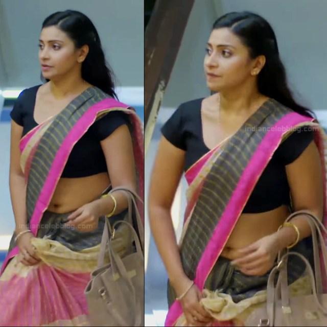 Hindi TV actress Aleeza khan CTS2 12 hot saree pics