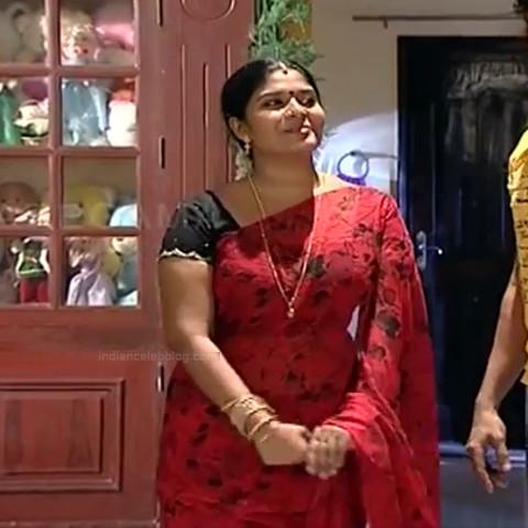 Neepa tamil tv actress PonDTS1 16 hot sari caps