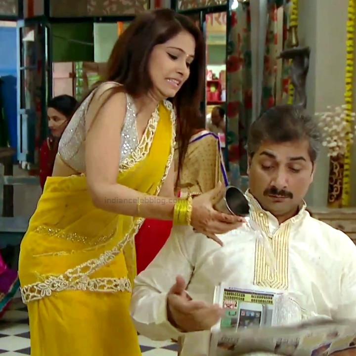 Pallavi gupta hindi tv actress CTS2 12 hot sari pics