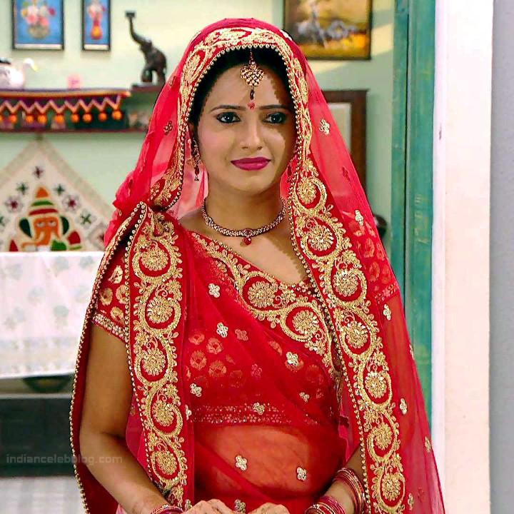 Roshni rastogi hindi tv actress CelebTS1 12 hot saree pic