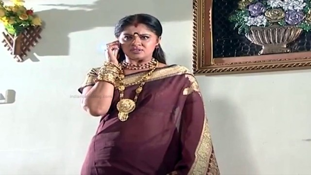 Sudha chandran tamil tv actress Pondatti TS2 6 hot saree caps