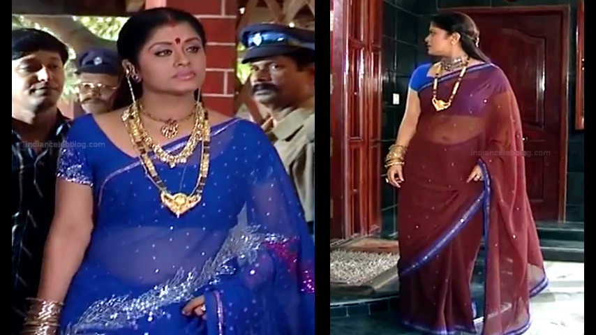 Sudha chandran tamil tv actress Pondatti TS2 8 hot saree photos