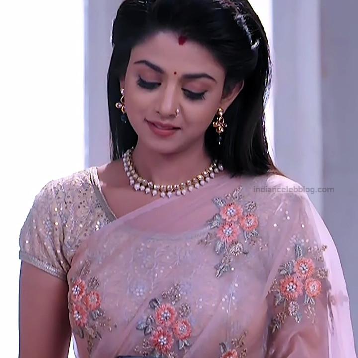 Tanvi Dogra Hindi serial actress JijiMS1 11 saree pic
