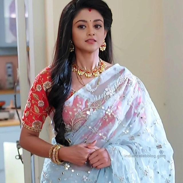 Tanvi Dogra Hindi serial actress JijiMS1 8 saree pic