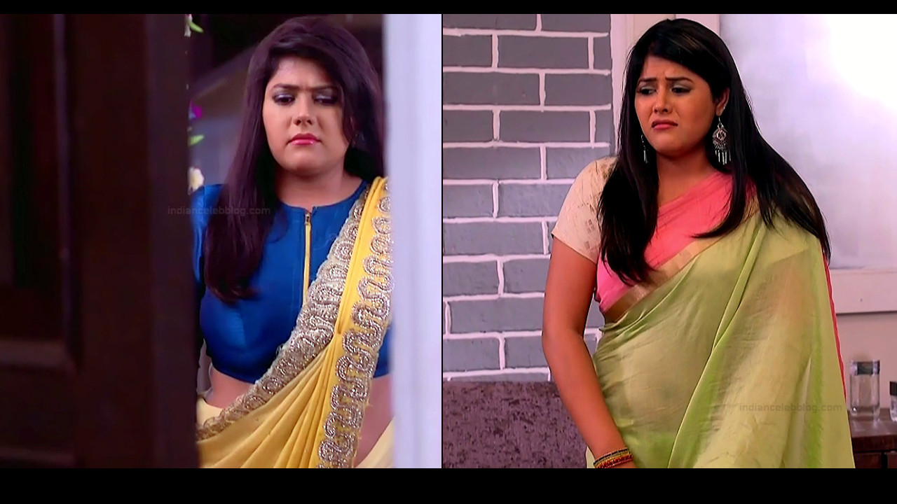 Aditi Sharma Ved hot back midriff show in saree hd tv caps