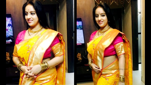 Deepika Singh Hindi TV actress event S1 5 saree pics