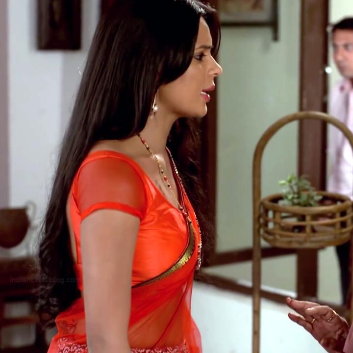Sonal Vengurlekar hindi tv celeb 9 hot saree photo