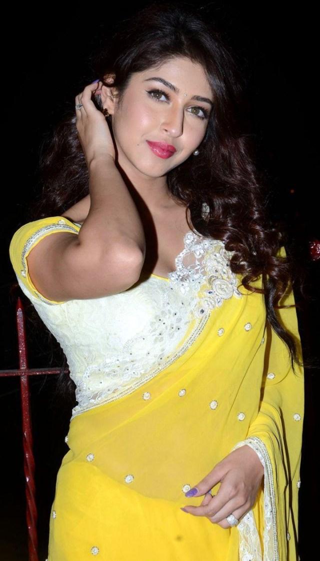 Sonarika Bhadoria hindi tv actress Event CTS3 4 hot sari photo