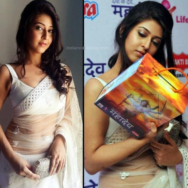 Sonarika Bhadoria hindi tv actress Event CTS3 5 hot saree pics